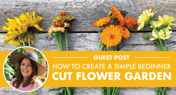 How to Create a Simple Beginner Cut Flower Garden