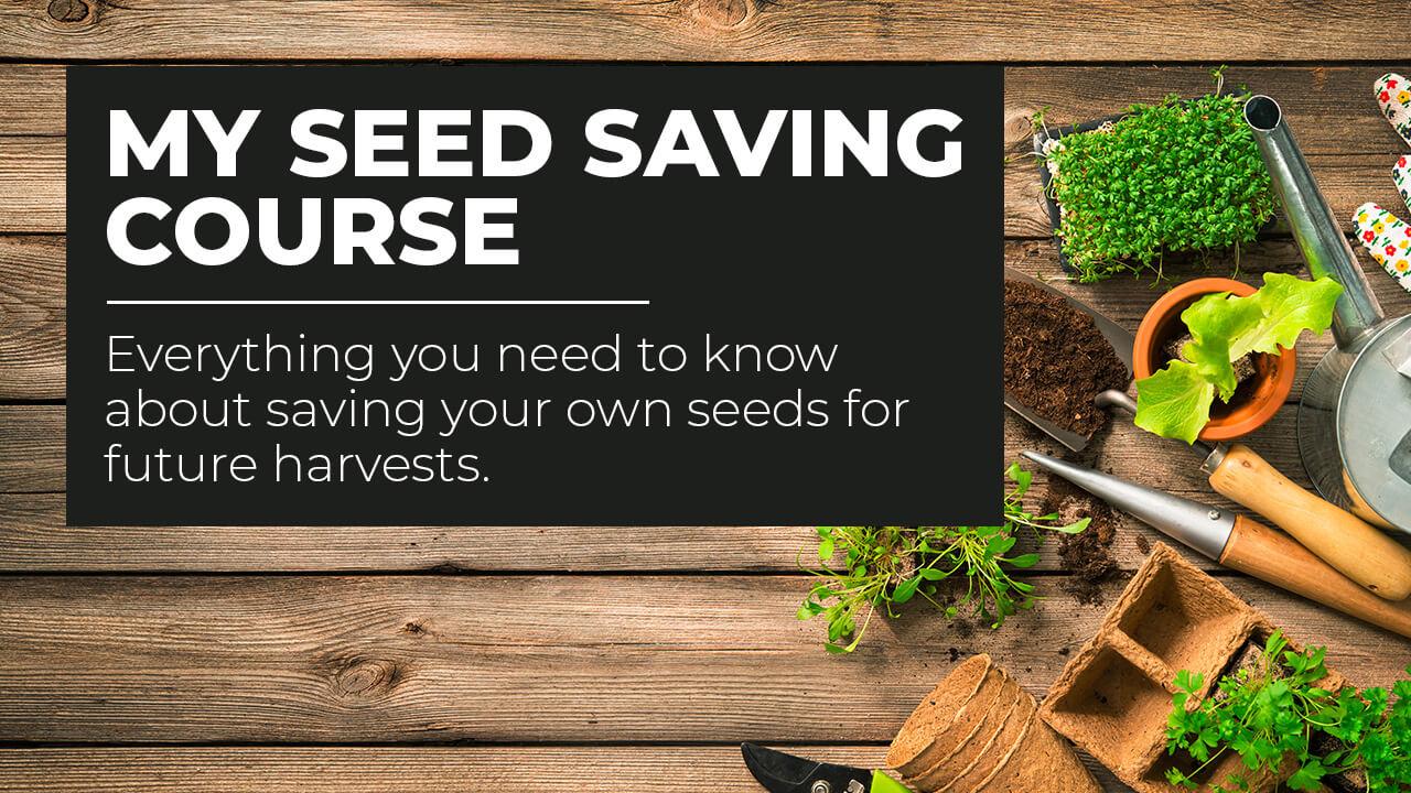 My Seed Saving Course